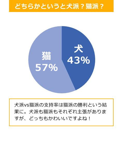 questionnaire_12